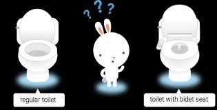 What Is A Toilet Bidet Bidet Toilet Seats U0026 Reviews Bidetking Com