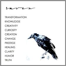 raven transformation knowledge creativity curiosity creation