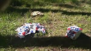 Wildfire Telluride Co by Sheriff Sends Video Of Party Trash In National Forest To Parents