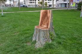 siege en forme de file tronc d arbre découpé en forme de siège 4 jpg wikimedia commons