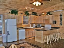 log cabin kitchen designs with ideas design 14306 iezdz