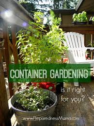 container gardening is container gardening right for you preparednessmama