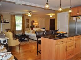 Best Under Cabinet Kitchen Lighting by Kitchen Light Fixture Over Kitchen Table Low Voltage Under