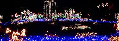 Botanical Gardens Lights Garden D Lights Events Downtown Bellevue Wa