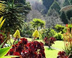 New Zealand Botanical Gardens Gardens In Whanganui Official Tourist Site For Whanganui Nz