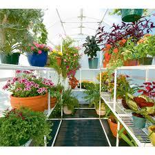 flower gardening for beginners home design