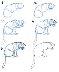 savanna williams how to draw cat bodies in poses