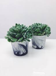 medium sized marbled cement pots planters for plants cactuses