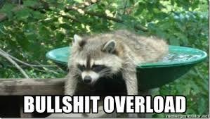 Meme Generator Raccoon - bullshit overload tired raccoon meme generator
