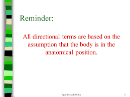 Directional Terms Human Anatomy Human Anatomy Chapter 2 Sport Books Publisher Ppt Download