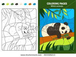 panda book stock images royalty free images u0026 vectors shutterstock