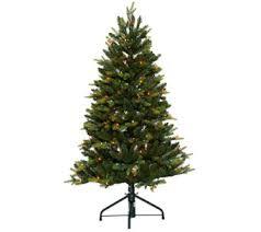 bethlehem lights trees for the