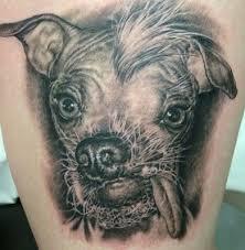 star tattoos dog tattoos elephant tattoo designs horse tattoo