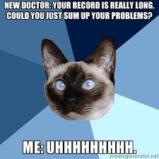 Cat Problems Meme - friday 4 september 2015 meme images chronic illness cat