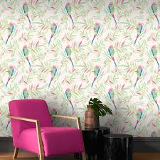 beautiful exotic and tropical birds themed wallpapers feature wall
