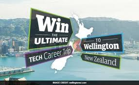 new zealand job interview zealand looking for techies free flight free stay for job interview