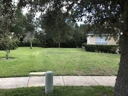 new to lawn care still figuring out quotes what would you