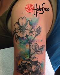 watercolour category habu san philip herberstein tattoo