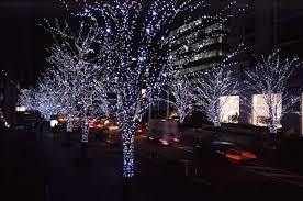 christmas lights pics from happy holidays christmas