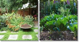 how to plan a garden layout for beginners vkool