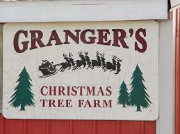 the northern new york gardener we u0027ve got your christmas tree
