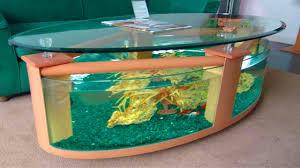 Home Aquarium by Eye Catching Home Aquarium Ideas Youtube