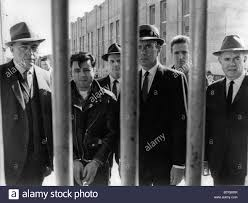 in cold blood stock photos u0026 in cold blood stock images alamy
