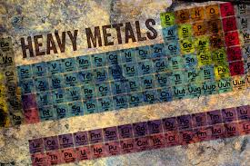 what are the heavy metals on the periodic table plant head protein simply the best plant based protein heavy metals