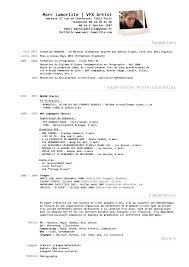 Art Resume Examples by Download Vfx Resume Samples Haadyaooverbayresort Com