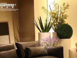 beautiful big vases for living room contemporary awesome design