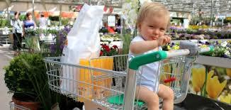 siège bébé caddie des caddies et des paniers shopping pratiques floralux