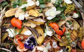 5 ways to cut on post thanksgiving food scraps club