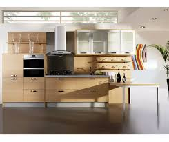 elegant contemporary kitchen designs uk ideas this kitchen designs the uk make you have a different look from the ordinary contemporary design that you can find easily