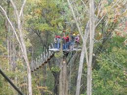 Wisconsin wildlife tours images High in the treetops picture of lake geneva canopy tours lake jpg