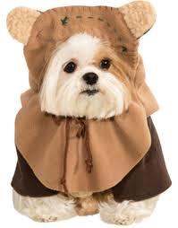 25 trendy dog halloween costumes under 25 u2013 iheartdogs com