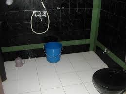 Latest Toilet Designs by Download Bathroom Indian Designs Gurdjieffouspensky Com