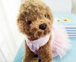 Dog Wedding Dress Aliexpress Com Buy Pet Wedding Dress Party Dog Clothes Pet Skirt
