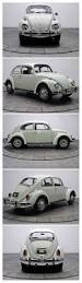 volkswagen beetle trunk in front best 25 volkswagen beetle vintage ideas on pinterest bug car