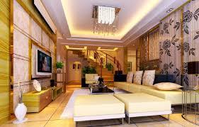 duplex home interior design modern storage stairs hallway with ideas understair living