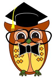 graduation owl graduation owl stock vector illustration of isolated 48379484