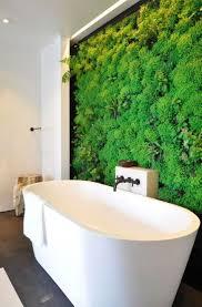 Interior Plant Wall Best 25 Bathroom Plants Ideas On Pinterest Plants In Bathroom