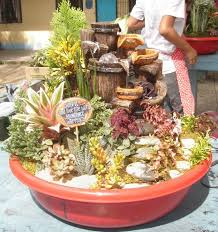 Dish Garden Ideas From Tito Greg S Dish Garden Skill Competition Garden
