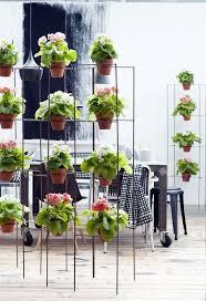135 best macetas images on pinterest pots plants and projects