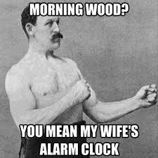 Morning Wood Meme - 70 funniest good morning memes