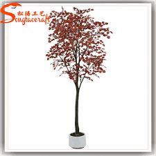 wholesale durable evergreen small mini size maple tree
