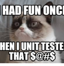 Grumpy Cat Meme I Had Fun Once - 25 best memes about grumpy cat i had fun once grumpy cat i had