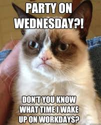 Wednesday Meme - party on wednesday cat meme cat planet cat planet