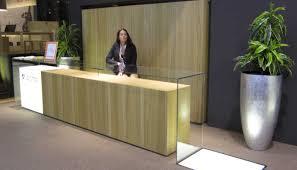 Desk Inspiration Desk Hotel Reception Desk Plucky Salon Reception Desk