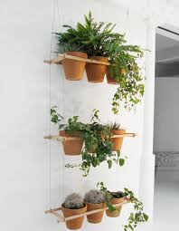 plant hanging shelves diy make pinterest hanging plant