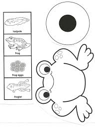 frog life cycle lesson plan first grade frog activity sheet life